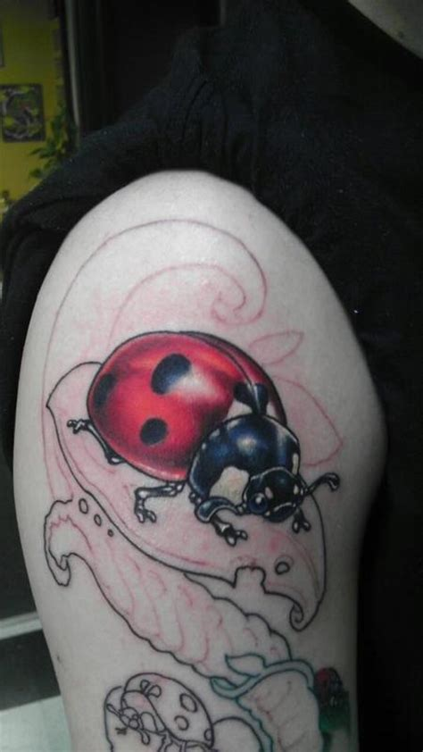new school ladybug tattoo powerline tattoo tattoos shane baker ladybug bio