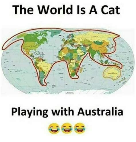 how big is a the world is a cat playing with australia meme on me me