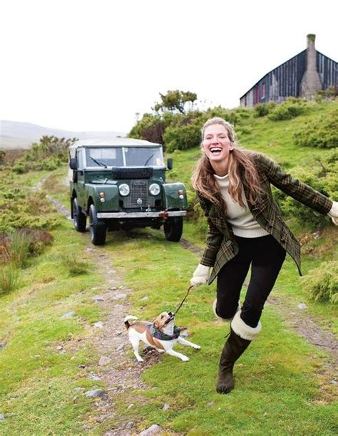 land rover setter dog defender land rover 4x4 land rovers and all other
