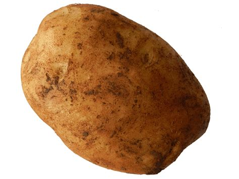 What Potatoes Do potatoes fruit vegetables flowers canberra wiffens