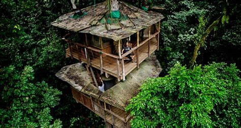 eco homes sustainable tree houses home and gardening this tree house community in costa rica is the new