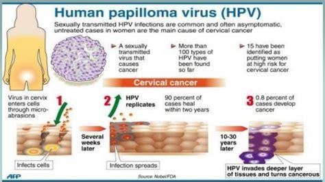 papilloma virus pap test human papillomavirus hpv