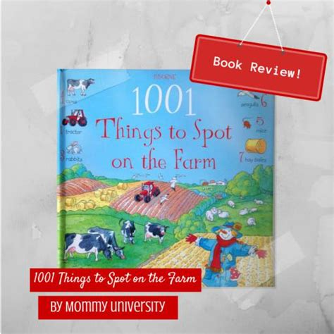 Book Review The Spot By Bank by Usborne Book Review 1001 Things To Spot On The Farm