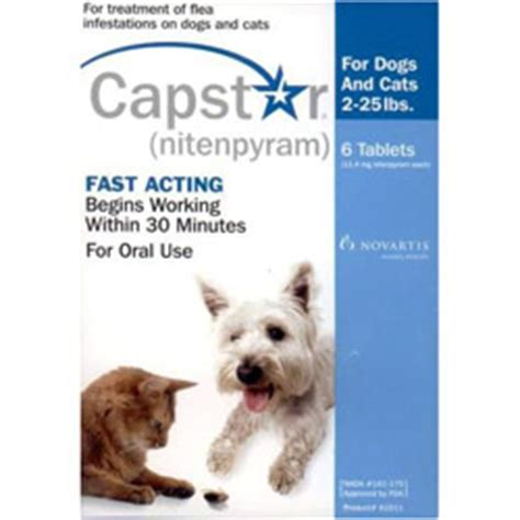 capstar for cats small dogs capstar for cats buy capstar flea treatment for cat