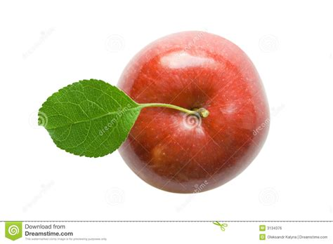 Apple Top apple royalty free stock image image 3134376