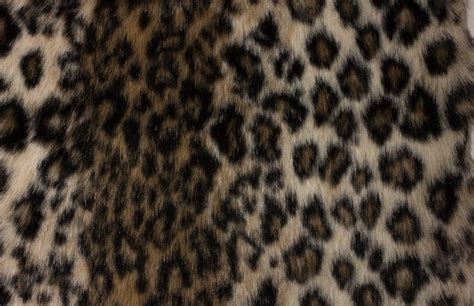 Snow Leopard Upholstery Fabric by E Z Fabric Inc Faux Leopard Fabric Upholstery Fabric Houzz