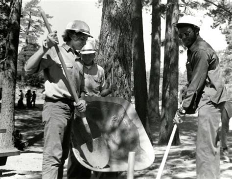 the new deal s forest army how the civilian conservation corps worked how things worked books char miller on the history of conservation corps