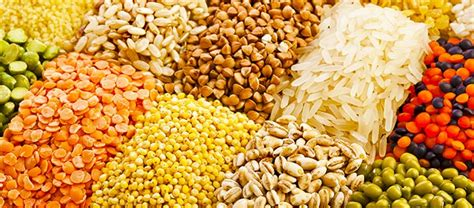 whole grains healthy or not how do whole grain foods help our