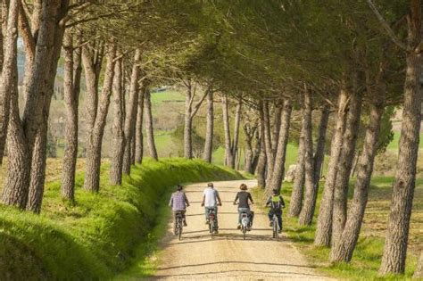bike tours direct italy guided e bike tour in tuscany italy picture of toscana