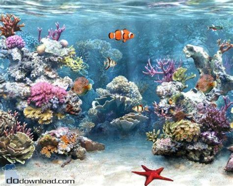 best fish screensaver best 25 fish screensaver ideas on underwater