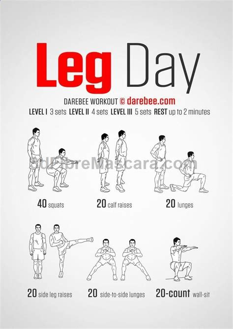 7 Leg Strengthening Exercises by Leg Workout Posted By Newhowtolosebellyfat Leg