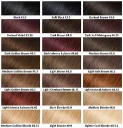 garnier hair color chart doufashion trends fashion and fashion week