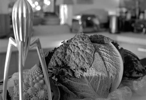 l internaute cuisine ap駻itif mentions l 233 gales atelier de paul