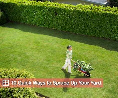 How To Fix A Backyard by Easy And Inexpensive Ways To Fix Up Your Yard Popsugar Home