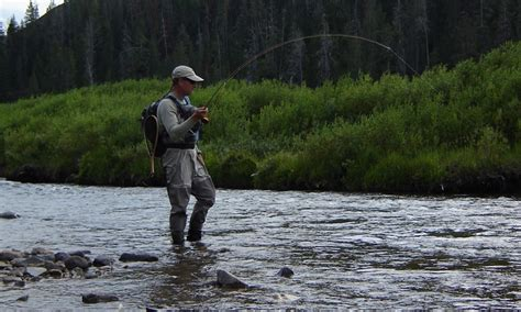 fishing the gallatin river montana gallatin canyon in montana alltrips