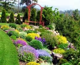 small flowering shrubs for landscaping evergreen garden bushes and shrubs for landscaping
