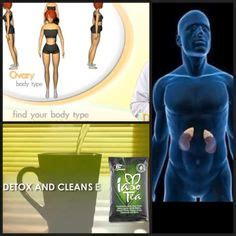 Ovary Type Detox by Weight Loss On Detox Tea Get Healthy And