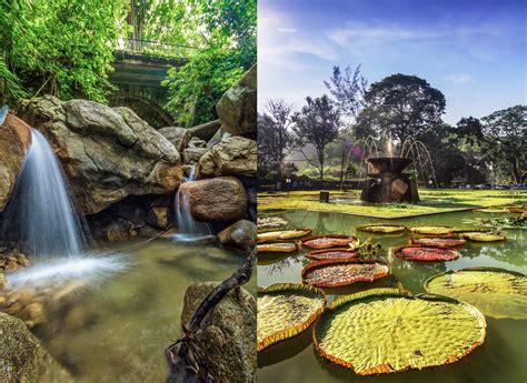 penang botanical garden penanggetaway a trip to botanical gardens penang s
