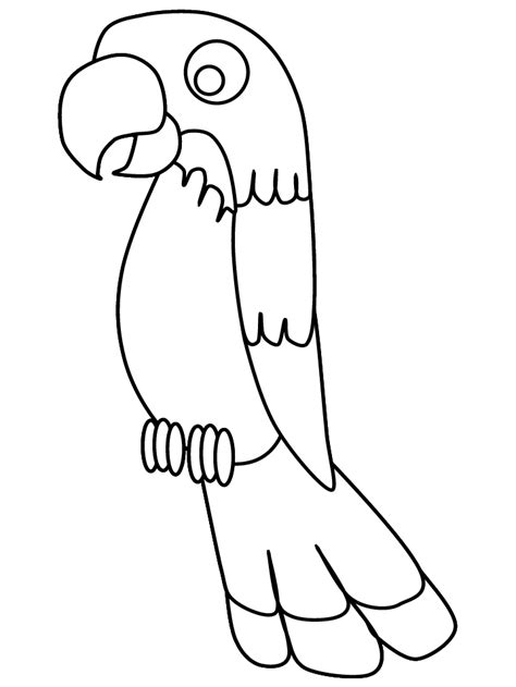 printable birds parrot3 animals coloring pages