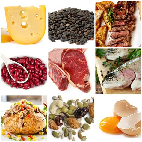 how much protein in a the protein guide how much protein do you need