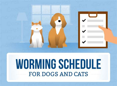 how after worming puppy are worms expelled worming schedules for cats dogs canna pet