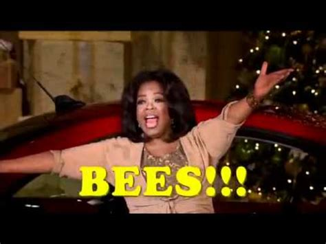 Oprah Meme - bees oprah s quot you get a car quot know your meme