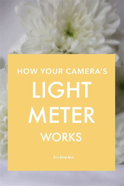 how to read a light meter 1000 images about beginner photography tips on pinterest