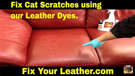 how to fix leather couch scratches how to fix cat scratches on a leather couch youtube