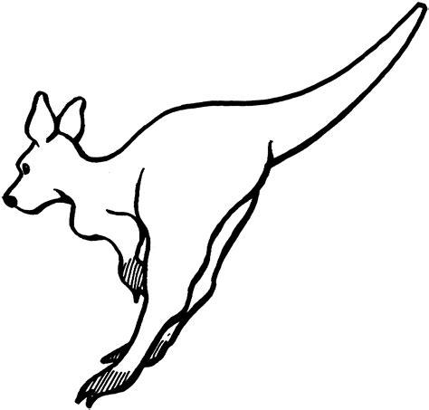 animal coloring pages kangaroo animal coloring pages for kids kangaroo animal coloring