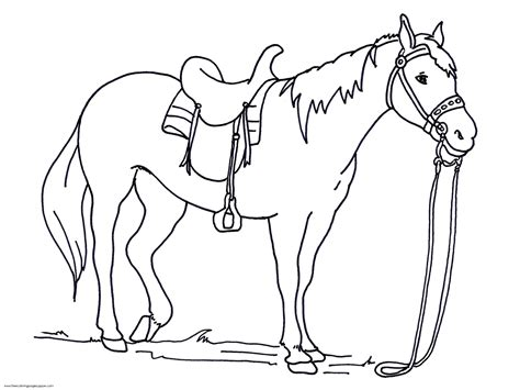 coloring pages of race horses race horse coloring page coloring horse coloring page