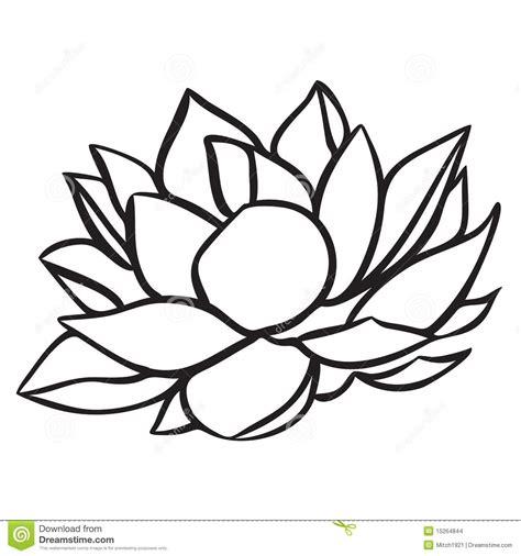 Lotus Black And White Outline by Lotus Vector Illustratie Illustratie Bestaande Uit Ge 239 Soleerd 15264844