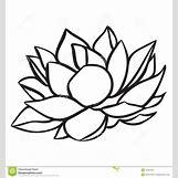 Lotus Flower Black And White Drawing | 1300 x 1390 jpeg 104kB