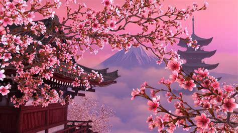 cherry blossom wallpapers zyzixun
