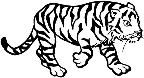 tiger coloring page free printable tiger coloring pages for animal place
