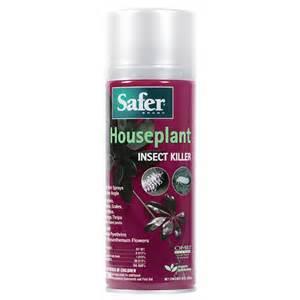Non Toxic Garden Pest Control - homemade non toxic mosquito trap apps directories
