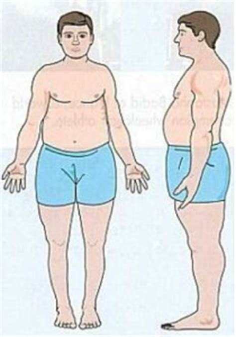 healthy fats for endomorph ecto endo or mesomorph what type are you
