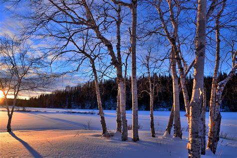 kostenloses foto winterlandschaft sonnenuntergang
