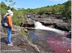 Caño Cristales | Sitios Turisticos en Meta | Viaja por ... Galeria Cano Bogota