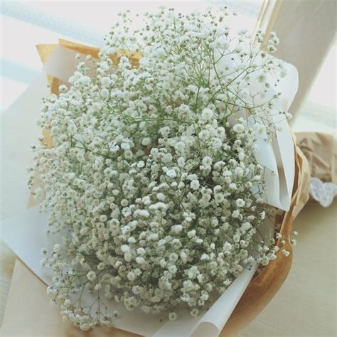babys breath bouquet how to wrap your own bouquet large baby s breath bouquet flower gift korea 330 5