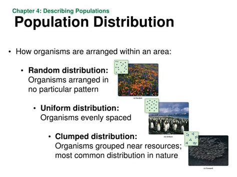 Most Common Dispersion Pattern In Nature | ppt fixing a hole in the sky powerpoint presentation