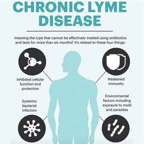Lyme Disease Detox by 381 Best Lyme Disease Images On Lyme Disease