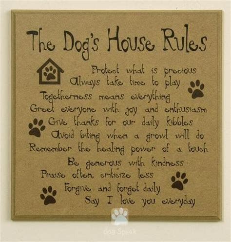 dog house rules dog house rules paperblog