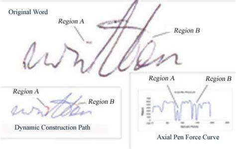 Forensic Handwriting Analysis Worksheet by Analysis Of Handwriting Writing