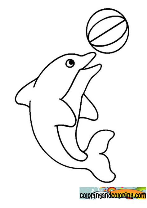 what color are dolphins free coloring pages of baby dolphins
