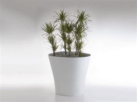 vasi per piante in resina i vasi in resina vasi per piante tipi di vasi in resina