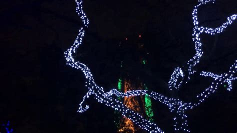 Christmas Lights Synced To Music Six Flags Youtube Lights Synced To