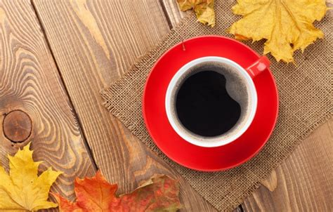 coffee autumn wallpaper wallpaper cup cup maple leaves fall autumn coffee