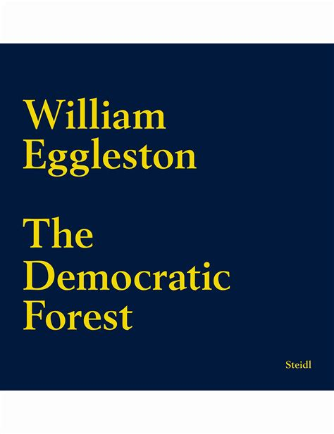 william eggleston the democratic 3958292569 william eggleston 169 pleasurephoto pagina 5