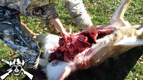 how to gut a buck how to gut a deer 101