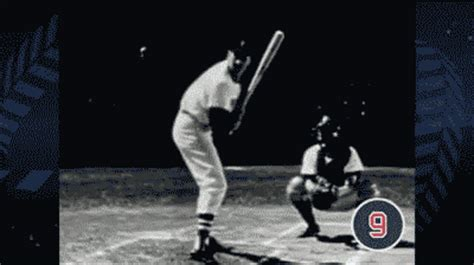 ted williams swing shawn green not able to attain the status of ted williams